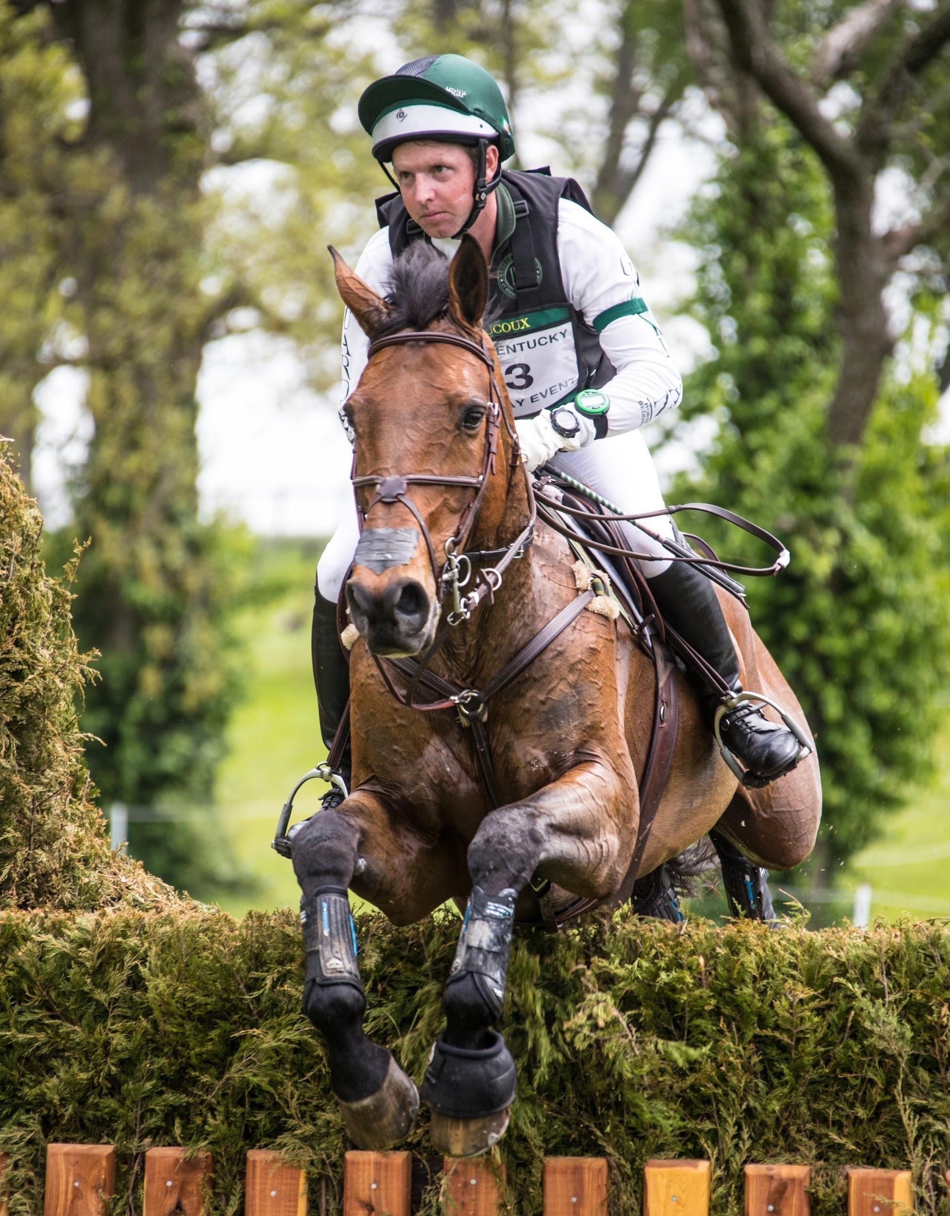 Success Equestrian Rider Tim Bourke